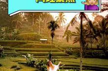 巴厘岛的网红景点&攻略