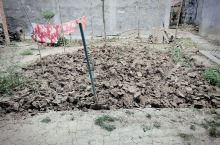 从新疆到中原体验农村生活