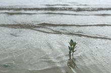 柬埔寨的海边