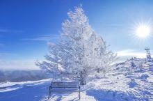阿尔山白狼峰 祭最高的敖包,许愿实现了可以不还愿 穿梭在白桦林木栈道中,做一只可爱的精灵 登最高山顶