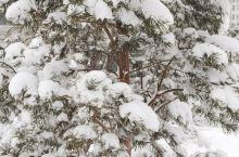 出差遇大雪