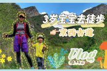 亲子徒步京西古道,行走自然简单纯粹  徒步京西古道的视频来喽!无论1岁,3岁,还是30岁,也无论瞧瞧