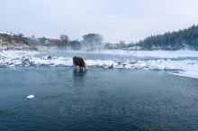 -30℃不冻河 北国雪原美爆了!