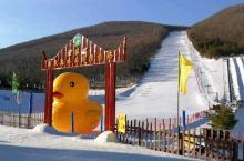 绥芬河森林公园滑雪场,体验冰雪运动的乐趣