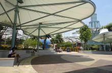 打卡·新加坡