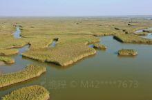 美丽盘锦红海滩