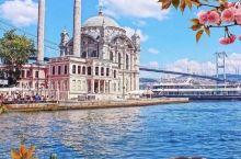 伊斯坦布尔的春天,神圣而浪漫。
