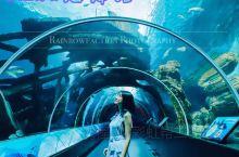 旅行 | 梦幻世界新加坡SEA海洋馆