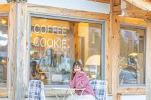 韩国探店咖啡点心小店 秋意渐浓,在韩国邂逅秋天。 超颜值咖啡厅,推开玻璃门的一刹那,满眼金黄色的枫叶