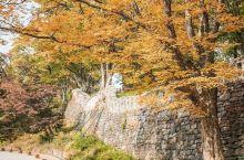 奥林匹克森林公园我眼中北京最美的秋季景