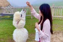 郴州旅行出发仰天湖高椅岭东江湖二日历险记