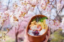 樱花季过去了,樱花便当一样养眼哦~?