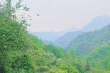 青城后山游记