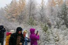 在回程的路上,南方的娃娃们见到下雪了,兴奋都不得了!