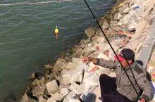 营口鲅鱼圈