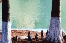 独墅湖周边的景色