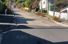 新西兰南岛自驾之世界最斜街道-2