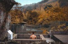 成都酒店 | 藏于森林里的隐世温泉酒店