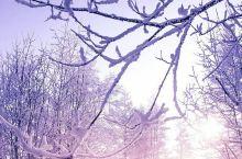 冬去春来,美好温暖的日子来了!!!!!!好好赞赞赞赞