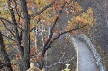 秋天的白石山