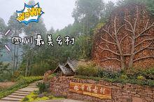 成都周边丨这应该是四川最美乡村