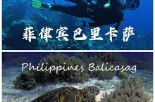 夏日海岛|顶级潜水天堂巴里卡萨