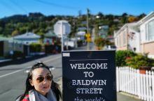 新西兰南岛自驾之世界最斜街道-1