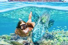 花儿与少年同款凯恩斯大堡礁太阳恋人号游船