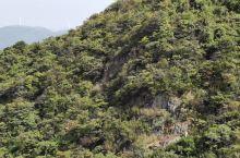 莫干山好风景,值得去看看