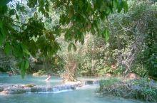 老挝 琅勃拉邦 光西瀑布 不能错过