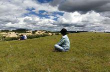 暑假自驾在乌兰布统大草原,蓝天白云下的草原,野花在风中摇曵,那种空旷纯洁的感觉是在都市无法寻觅和获得