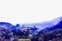 纳加阔特,海拔2千多米、是喜马拉雅的观景台。天气好的时候,可以看到对面喜马拉雅的雪峰。6月份正是雨季