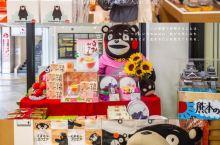 日本九州 | 熊本一日游 | 行程攻略