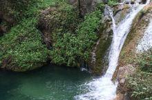 清澈透明的水流入池塘就变成绿色的啦!