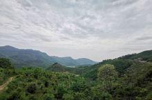 湖北麻城狮子峰四方茶社