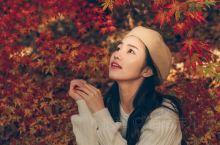 在秋天拍枫叶照片的人可以去奥森拍