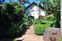 伊瓜苏鸟园,鸟类爱好者的天堂
