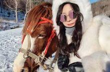 呼伦贝尔旅拍攻略  下雪啦,您的朋友圈可以这样发: 冬天的雪是天上揉碎的云 喜欢那些闪光的东西,比如