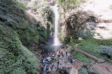 莫里热带雨林-莫里瀑布景区