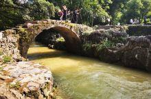 初夏的黄姚,无论烈日炎炎、还是阵雨冲刷,那承载千年时光的带龙桥、青石板、古榕树都显壮观独有景象