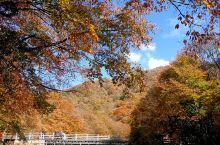 美丽的米仓山