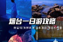 烟台两日游|海昌渔人码头网红打卡新地标