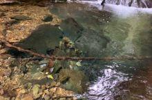 脚步放慢,发现美景。 你可能不知道,水墨汀溪还有一片天然的原始森林未经开发。3-4个人都抱不住的大树