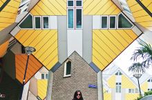 我在鹿特丹