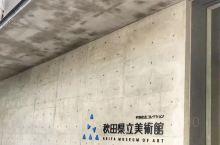 日本秋田市县立美术馆,著名的秋田犬