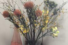 鲜花易过美丽长流