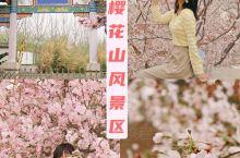 【滨州旅游】樱花山风景区|四月赏花攻略