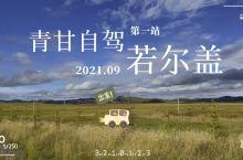 青甘自驾第一站:若尔盖大草原
