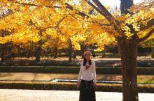 秋天的美绝对会让人陶醉的