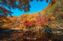 本溪关门山~坠入秋天的童话